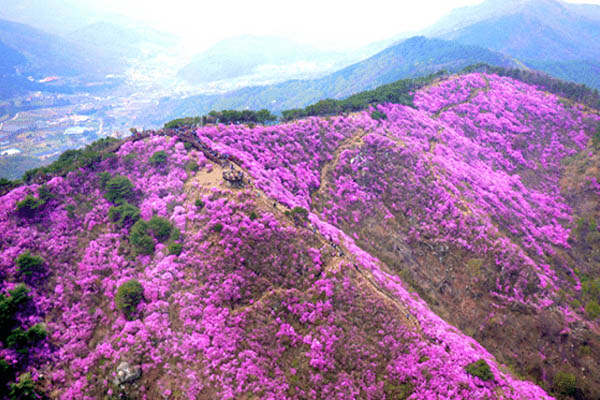 blog voyage coree sud mont Yeongchwisan