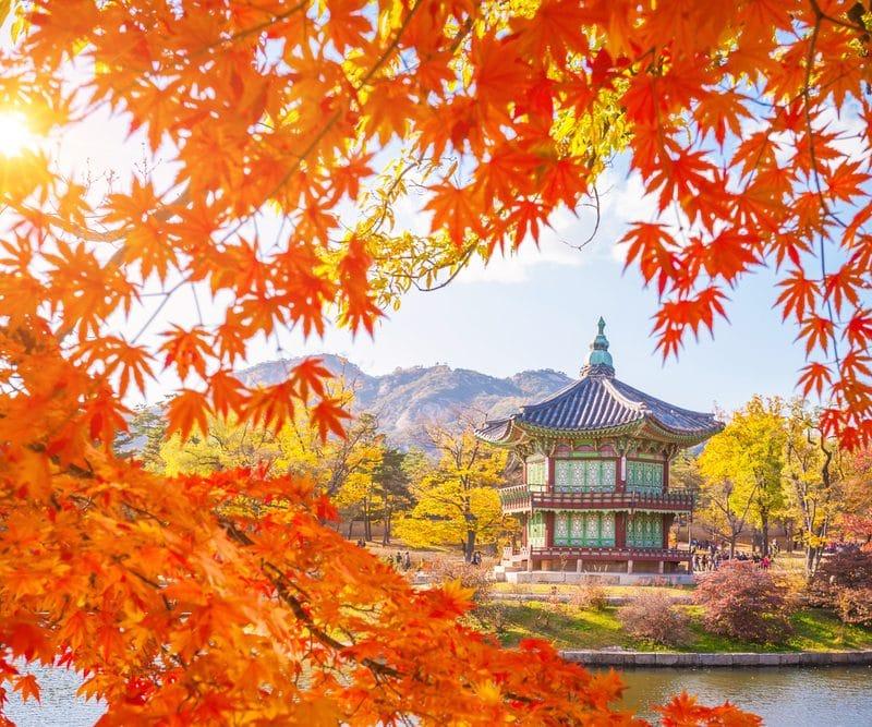 Séoul en automne Corée du Sud