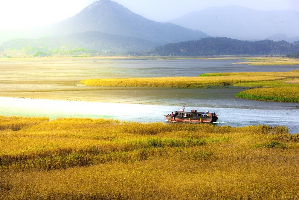 Baie de Suncheon Corée du Sud