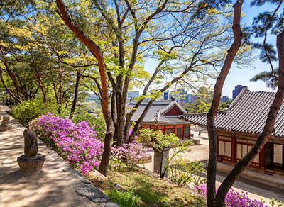 Printemps a Séoul Corée du Sud