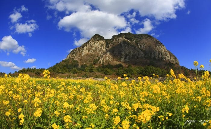 Montagne Sanbangsan ile de Jeju Corée du Sud