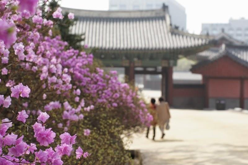 Palais de Chandeok Corée du Sud