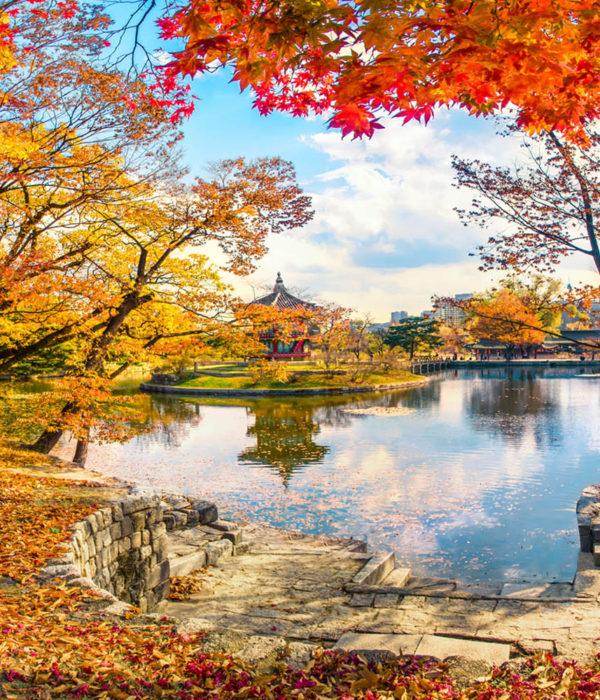 voyage coree automne