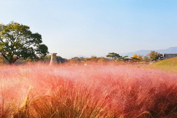 Gyeongju Observatoire de Cheomseongdae