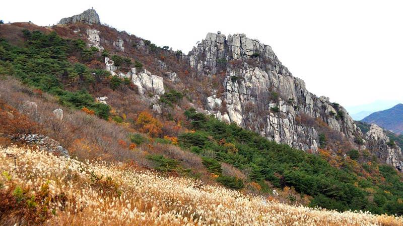 croisière_busan_montagne_geumjeongsan